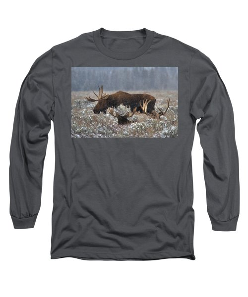 Long Sleeve T-Shirt featuring the photograph Bull Moose In The Snowy Meadow by Adam Jewell
