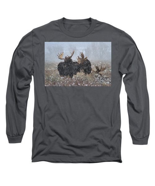 Long Sleeve T-Shirt featuring the photograph Bulls In The Snow by Adam Jewell