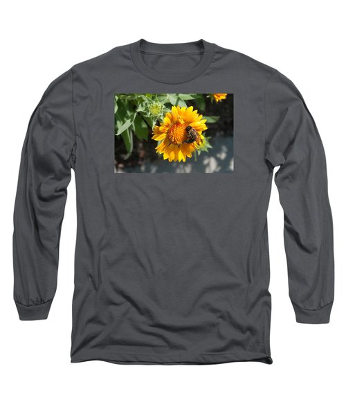 Bumble Bee Collecting Pollen On Sunflower Long Sleeve T-Shirt