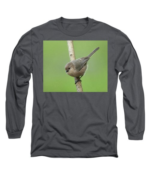 Bushtit Long Sleeve T-Shirt