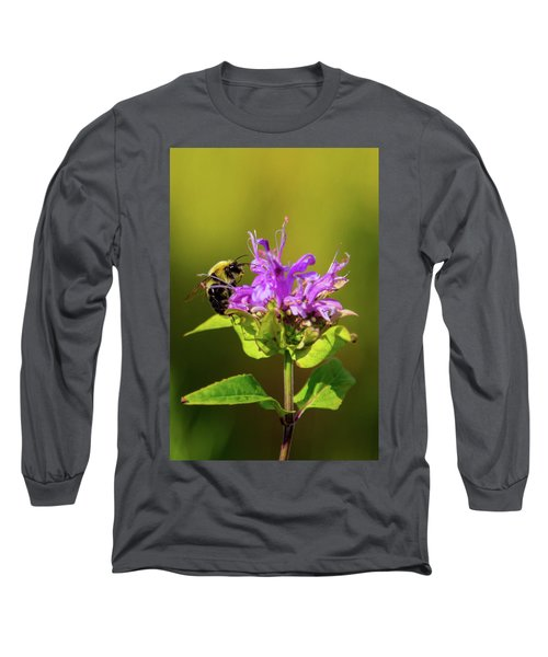 Busy As A Bee Long Sleeve T-Shirt