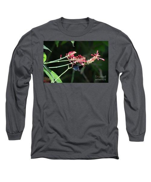 Butterfly In Flight Long Sleeve T-Shirt