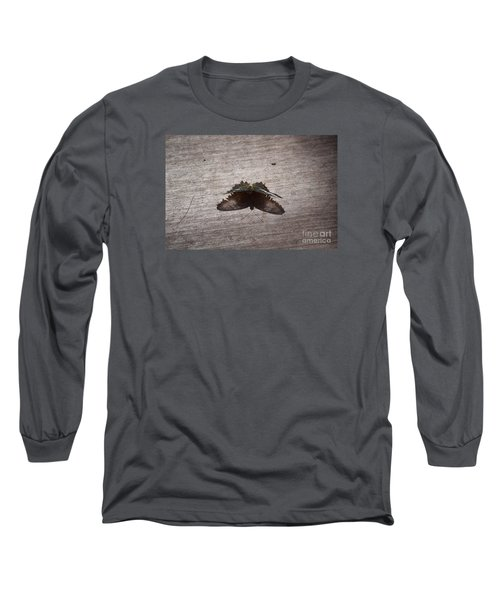 Butterfly See Through Long Sleeve T-Shirt