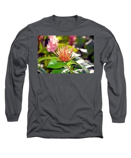 Butterfly Snack Long Sleeve T-Shirt