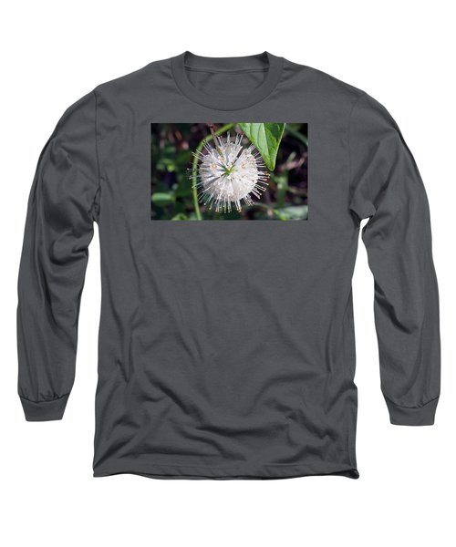 Buttonbush Long Sleeve T-Shirt by Kenneth Albin