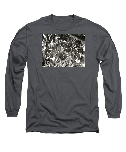 Long Sleeve T-Shirt featuring the photograph Bw Cobweb Tree by Megan Dirsa-DuBois