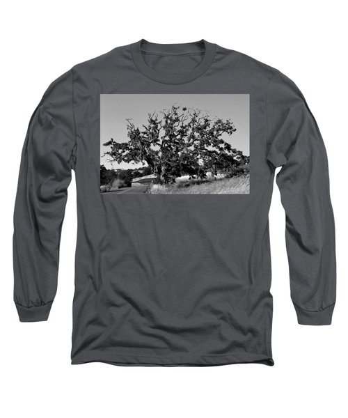 California Roadside Tree - Black And White Long Sleeve T-Shirt