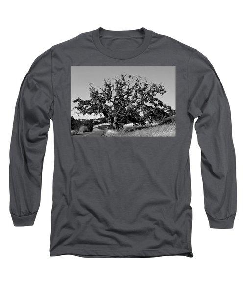California Roadside Tree - Black And White Long Sleeve T-Shirt