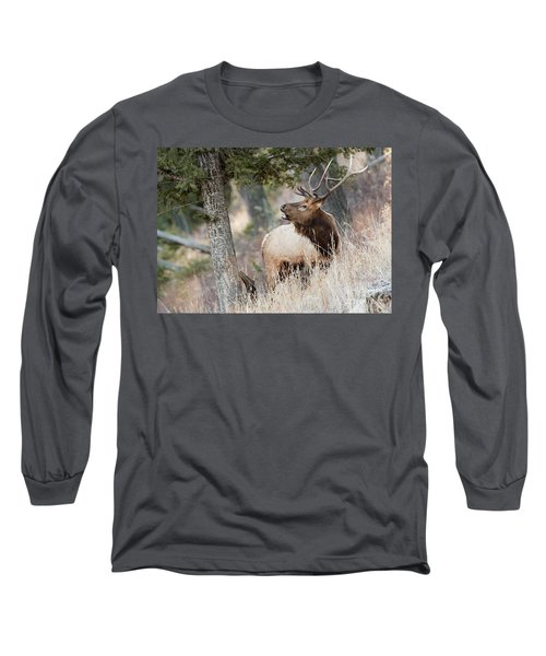 Calling Her Name Long Sleeve T-Shirt
