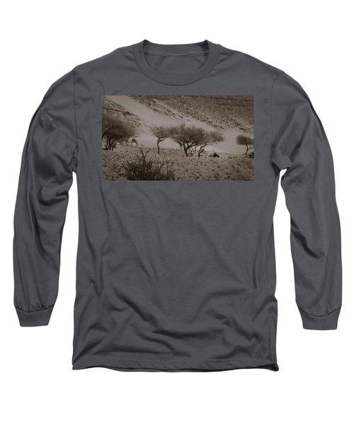 Camels Long Sleeve T-Shirt by Silvia Bruno