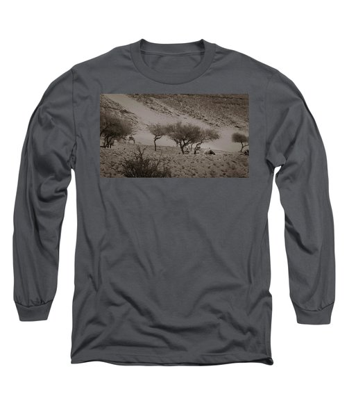 Camels Long Sleeve T-Shirt