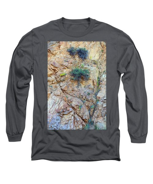 Long Sleeve T-Shirt featuring the photograph Canyon Vegetation by James BO Insogna