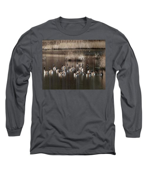 Cape Cod Americana Canada Geese Long Sleeve T-Shirt by Constantine Gregory