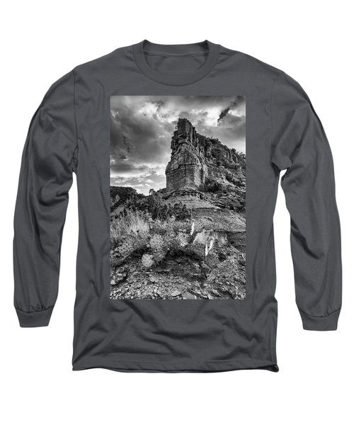 Long Sleeve T-Shirt featuring the photograph Caprock And Cactus by Stephen Stookey