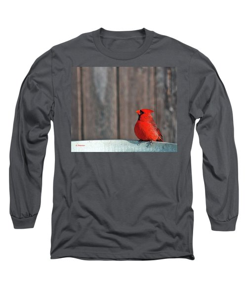 Cardinal Drinking Long Sleeve T-Shirt