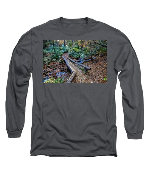 Carpet Of Leaves Long Sleeve T-Shirt by Dale R Carlson