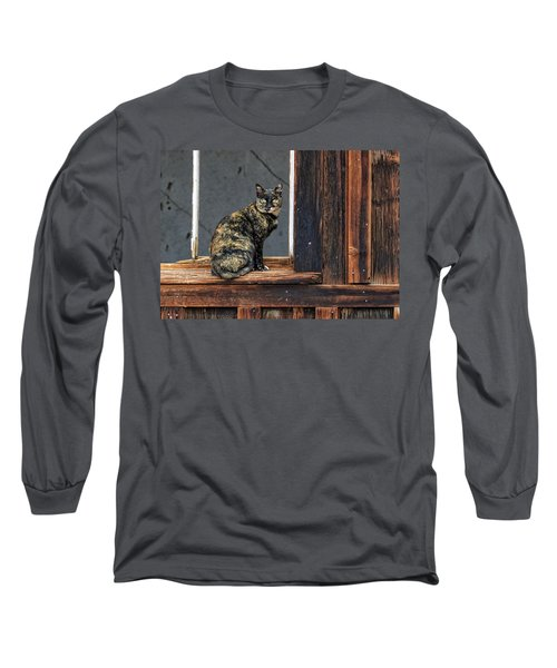 Cat In A Window Long Sleeve T-Shirt