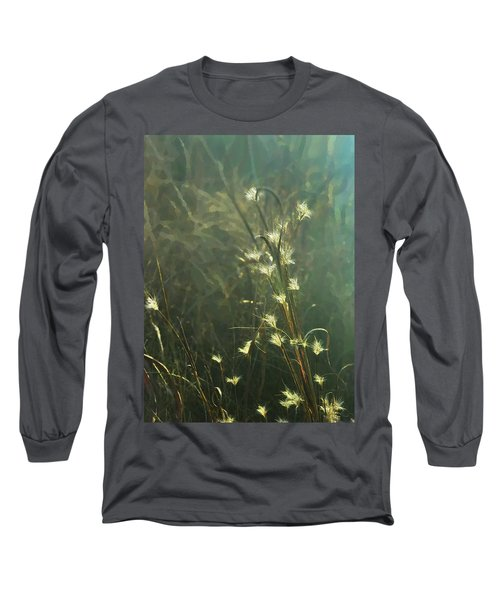 Catching The Light Long Sleeve T-Shirt