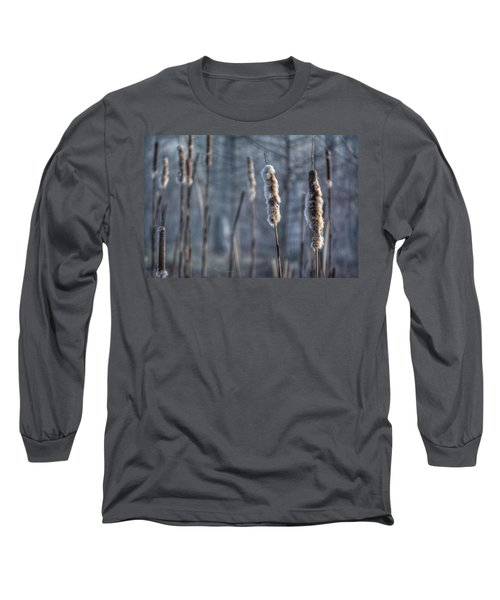 Cattails In The Winter Long Sleeve T-Shirt by Sumoflam Photography