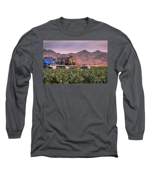 Cauliflower Harvest Long Sleeve T-Shirt by Robert Bales