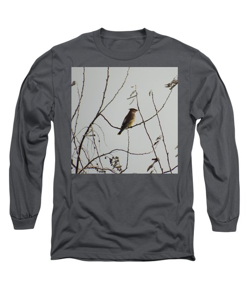 Cedar Wax Wing In Tree Long Sleeve T-Shirt by Kenneth Willis