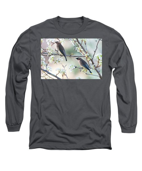 Cedar Wax Wing Pair Long Sleeve T-Shirt by Jim Fillpot