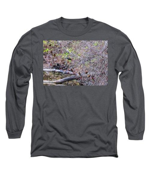 Cedar Waxwings Feeding 2 Long Sleeve T-Shirt by Edward Peterson