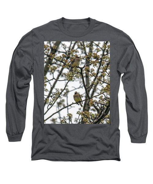 Cedar Waxwings In A Blossoming Tree Long Sleeve T-Shirt