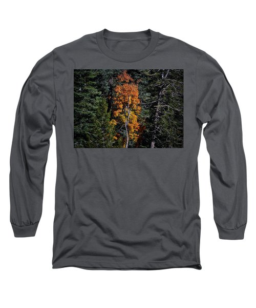 Change Of Seasons Long Sleeve T-Shirt