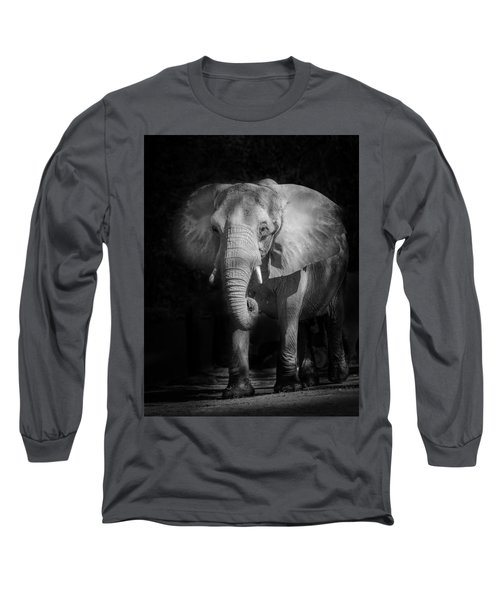 Charging Elephant Long Sleeve T-Shirt