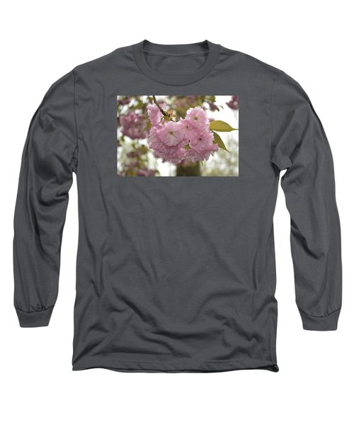 Cherry Blossoms Long Sleeve T-Shirt by Linda Geiger