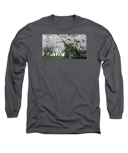 Cherry Blossoms Washington Dc Long Sleeve T-Shirt