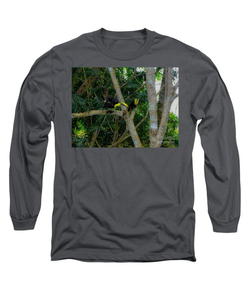 Chestnut-mandibled Toucans Long Sleeve T-Shirt