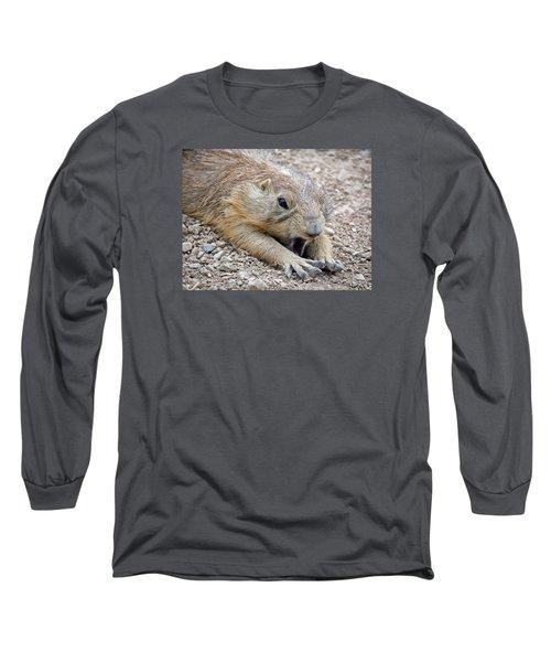 Chillin' Prairie Dog Long Sleeve T-Shirt by Elaine Malott