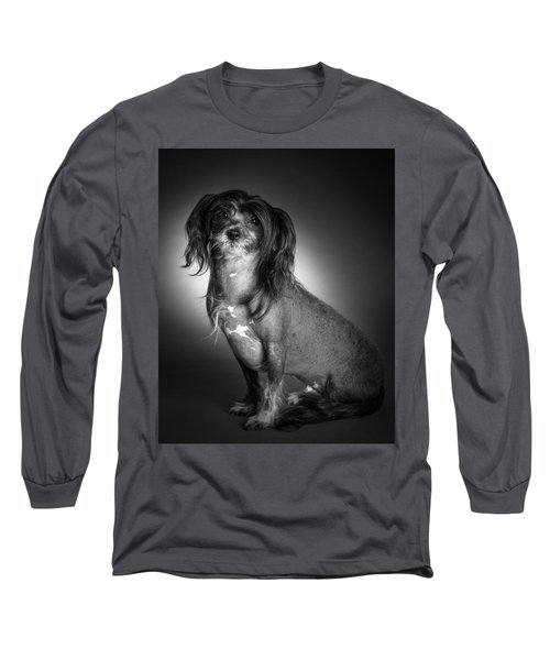 Chinese Crested - 01 Long Sleeve T-Shirt by Larry Carr
