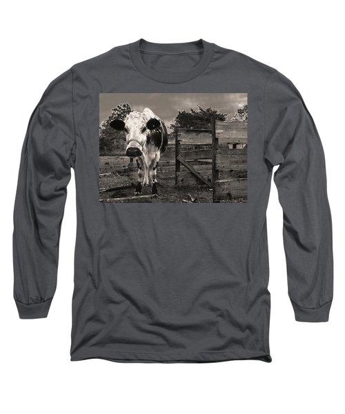 Chocolate Chip At The Stables Long Sleeve T-Shirt