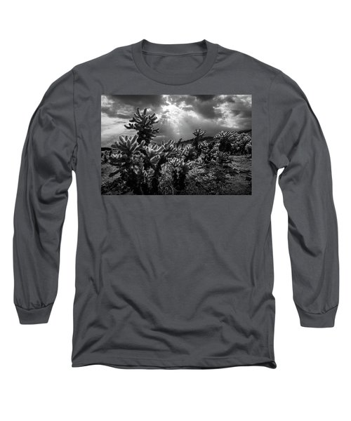 Long Sleeve T-Shirt featuring the photograph Cholla Cactus Garden Bathed In Sunlight In Black And White by Randall Nyhof