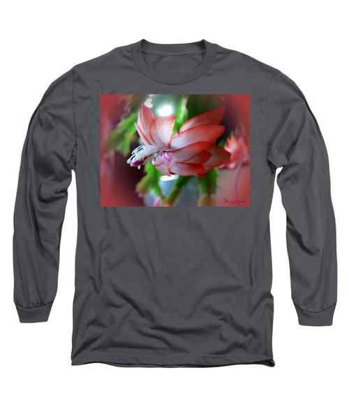 Christmas Cactus Long Sleeve T-Shirt by EricaMaxine  Price