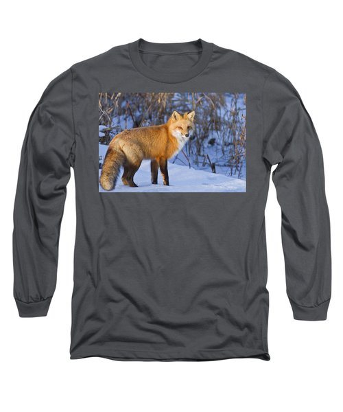 Christmas Fox Long Sleeve T-Shirt by Mircea Costina Photography