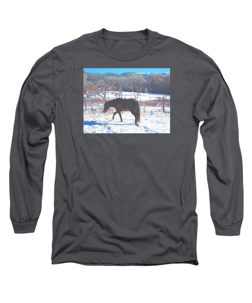 Long Sleeve T-Shirt featuring the photograph Christmas Roan El Valle I by Anastasia Savage Ealy
