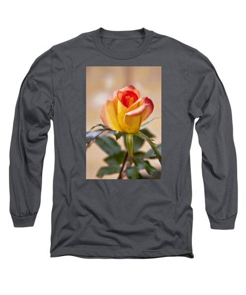 Long Sleeve T-Shirt featuring the photograph Christmas Rose by Joan Bertucci