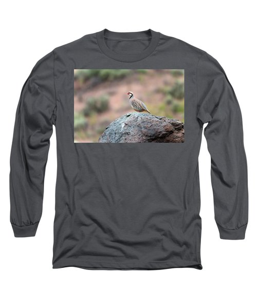 Chukar Partridge 2 Long Sleeve T-Shirt by Leland D Howard