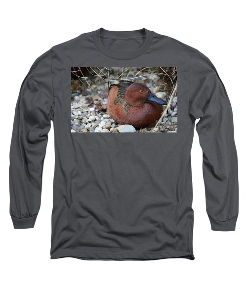 Cinnamon Teal Long Sleeve T-Shirt