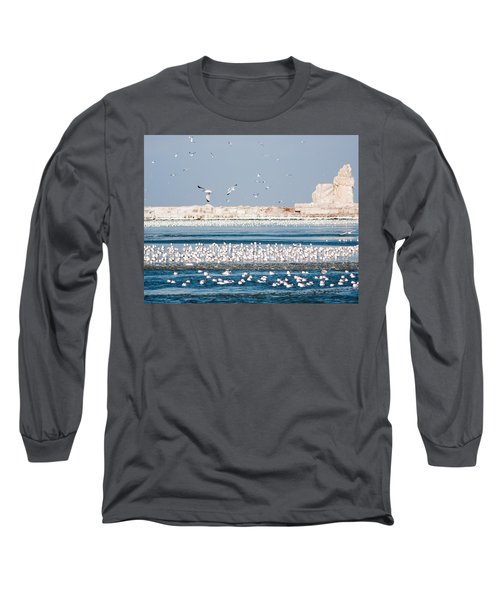 Cleveland Lighthouse In Ice  Long Sleeve T-Shirt