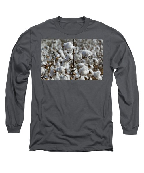 Close-up Of Cotton Plants In A Field Long Sleeve T-Shirt