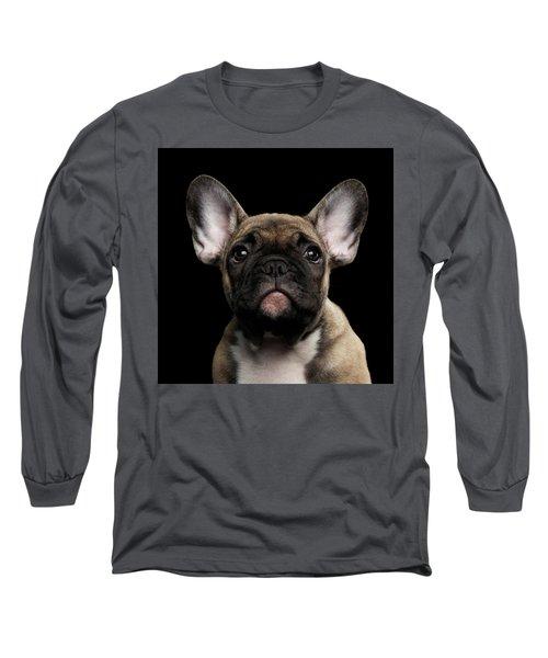 Closeup Portrait French Bulldog Puppy, Cute Looking In Camera Long Sleeve T-Shirt by Sergey Taran