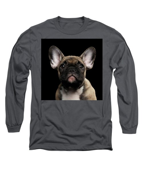 Closeup Portrait French Bulldog Puppy, Cute Looking In Camera Long Sleeve T-Shirt