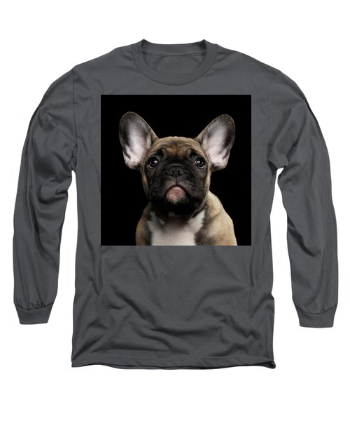 Closeup Portrait French Bulldog Puppy, Cute Looking In Camera Long Sleeve T-Shirt