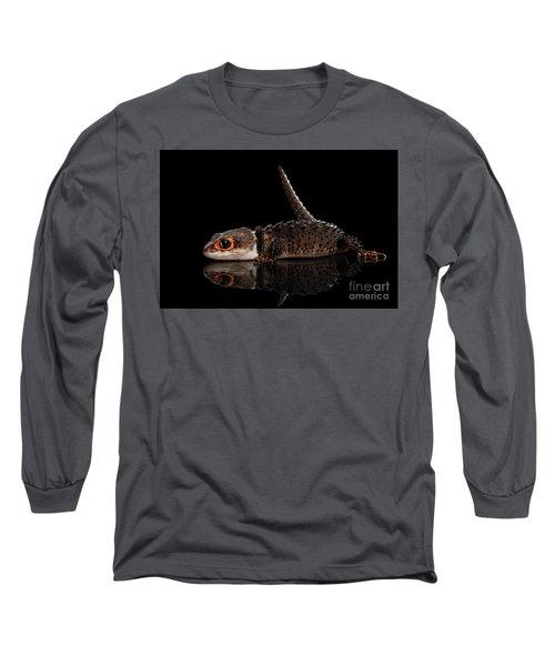 Closeup Red-eyed Crocodile Skink, Tribolonotus Gracilis, Isolated On Black Background Long Sleeve T-Shirt