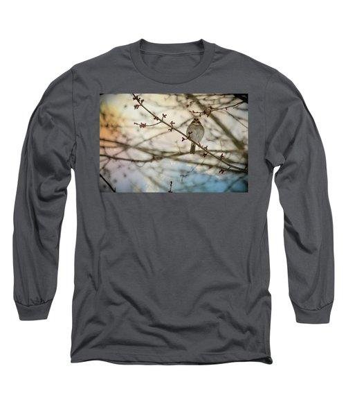 Cloudy Finch Long Sleeve T-Shirt by Trish Tritz
